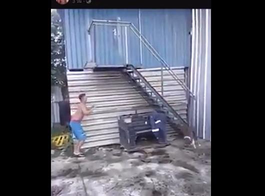 فيديو كوميدي لكلب يهاجم شخص في درج