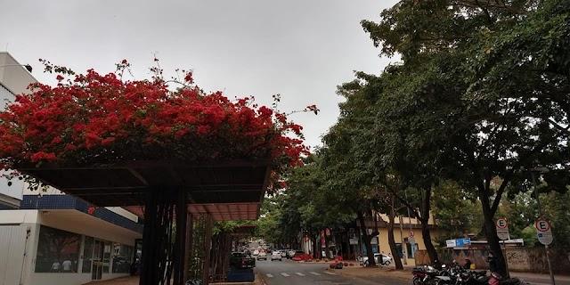 Previsão é de 20mm de chuva para esta quarta-feira, 19, em Foz do Iguaçu