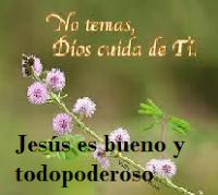 Jesús restaura nuestra vida