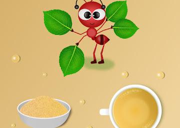 Receita Energética: Chá do Pó de Ginseng