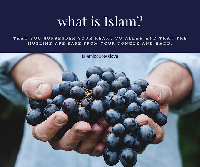 """The Prophet defined the true Muslim as one who avoids harming other Muslims with his tongue (words) and hand (actions).  Abdullah bin Amr reported: The Messenger of Allah, peace and blessings be upon him, said:  الْمُسْلِمُ مَنْ سَلِمَ الْمُسْلِمُونَ مِنْ لِسَانِهِ وَيَدِهِ  The Muslim is the one from whose tongue and hand the Muslims are safe.  Source: Ṣaḥīḥ al-Bukhārī 10, Grade:Muttafaqun Alayhi  Amr ibn Absah reported: A man said, """"O Messenger of Allah, what is Islam?"""" The Messenger of Allah, peace and blessings be upon him, said:  أَنْ تُسْلِمُ قَلْبَكَ لِلَّهِ وَيَسْلُمُ الْمُسْلِمُونَ مِنْ لِسَانِكَ وَيَدِكَ  That you surrender your heart to Allah and that the Muslims are safe from your tongue and hand.  Source: Shu'ab al-Imān 20,Grade:Sahih  We should be particularly careful to protect those within our own community, but the principle is not restricted only to Muslims. Rather, it applies to all humanity and even the animals.  In another narrationof this tradition, the Prophet said:  الْمُسْلِمُ مَنْ سَلِمَ النَّاسُ مِنْ لِسَانِهِ وَيَدِهِ وَالْمُؤْمِنُ مَنْ أَمِنَهُ النَّاسُ عَلَى دِمَائِهِمْ وَأَمْوَالِهِمْ  The Muslim is the one from whose tongue and hand the people are safe, and the believer is the one who is trusted with the lives and wealth of the people.  Source: Sunan al-Nasā'ī 4998, Grade:Sahih  And in another narration, the Prophet said:  الإسلام أفضل مَنْ سَلِمَ النَّاسُ مِنْ لِسَانِهِ وَيَدِهِ  The best Islam belongs to those from whose tongue and hand people are safe.  Source: Musnad Aḥmad 6714,Grade:Sahih  Hasan Al-Basri, may Allah have mercy on him, said:  إِنْ سَرَّكُمْ أَنْ تَسْلَمُوا وَيَسْلَمَ لَكُمْ دِينُكُمْ فَكُفُّوا أَيْدِيَكُمْ عَنْ دِمَاءِ النَّاسِ وَكُفُّوا أَلْسِنَتَكُمْ عَنْ أَعْرَاضِهِمْ وَكُفُّوا بُطُونَكُمْ عَنْ أَمْوَالِهِمْ  If you would be pleased to be safe and for your religion to be safe for you, then restrain your hands from harming the lives of people, restrain your tongues from harming their honor, and restrain your stom"""