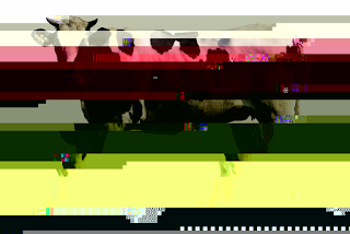 Glitch Fine Art Ricki Mountain