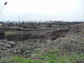 Чунишино. Покровский р-н. Стихийные свалки и сожжённые растительный покров в балках