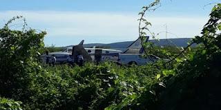 Avião com doses da vacina da Covid-19 se choca com animal em pista de aeródromo na Bahia