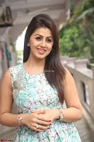 Nikki Galrani at Prema leela pelli gola trailer Launch ~  Exclusive 046.JPG