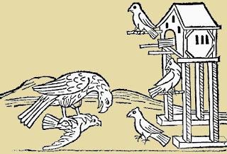 Il nibbio e le colombe (Fedro)