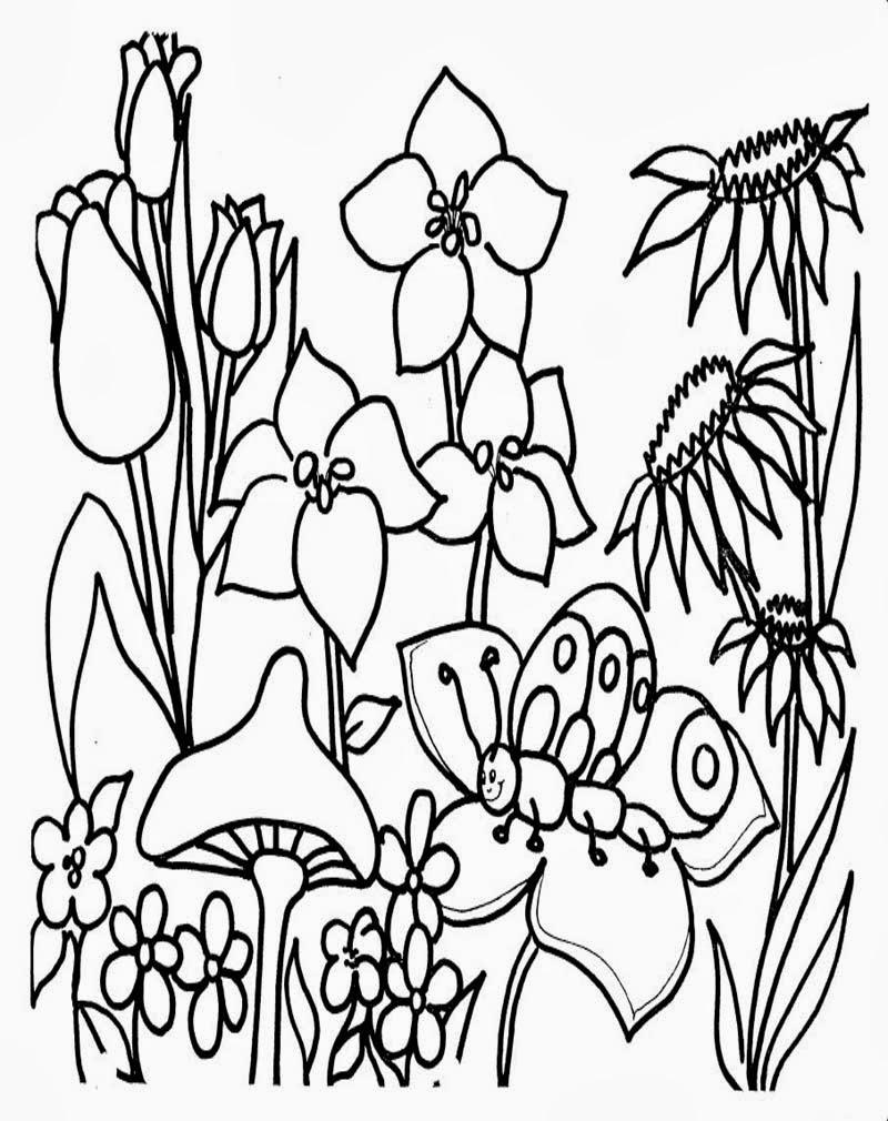 Download Gambar Taman Bunga Untuk Mewarnai
