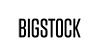 logo bigstock