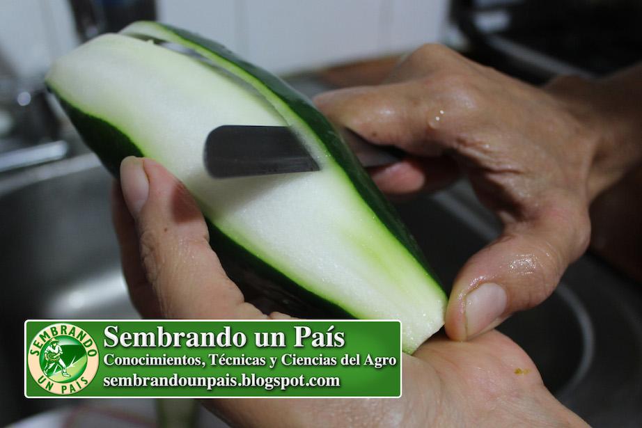 pelando pepino
