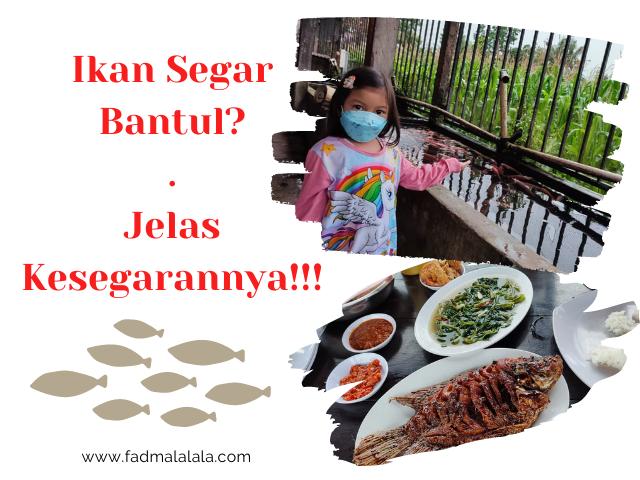 Ikan Segar Seru