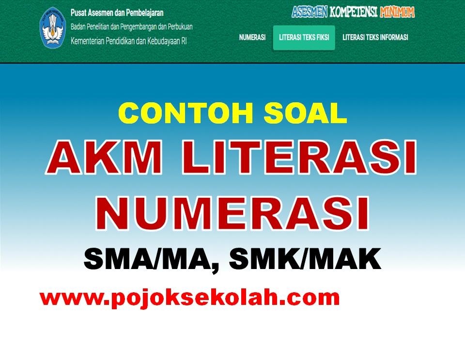 Soal AKM Literasi Dan Numerasi
