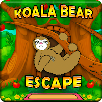 Hungry Koala Bear Escape