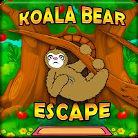 Hungry Koala Bear Escape …