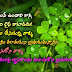 Lovely Fresh Telugu Good Morning Quotations images Messages