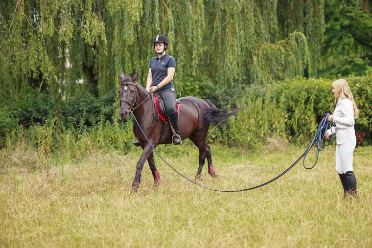 Horse Training | Equus Belgium |Horse Training