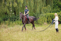 The importance of science in horse training by Georgina (Gina) Bishopp