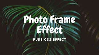 CSS Image with Photo Frame Effects