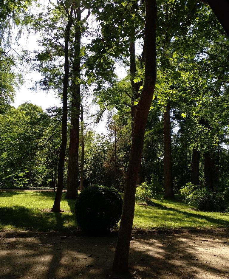 jardines-aranjuez-lugares-imprescindibles
