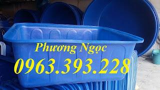 Thùng nhựa dung tích lớn, Thùng nhựa nuôi cá,Thùng nhựa chứa nước sạch B3f22bce4f52ad0cf443