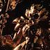 Revistas japonesas apresentam a figura de Odisseu de Ofiúco, o 13º Cavaleiro de Ouro, da Cloth Myth Ex!