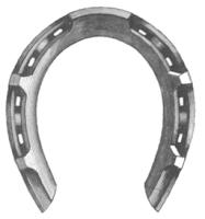 Goodenough patented horseshoe