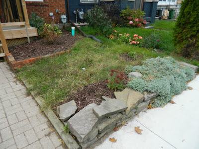 Toronto East York Front Garden Fall Cleanup After by Paul Jung Gardening Services--a Toronto Organic Gardening Services Company