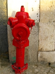 Lisbon fire hydrants