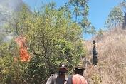 Dua Hektar Hutan di Bukit Payang Kintamani  14 Titik Terbakar