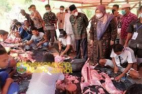 Bupati Masnah Dampingi Kunker Wakil Gubernur Jambi dalam rangka penyembelihan 81 ekor hewan qurban
