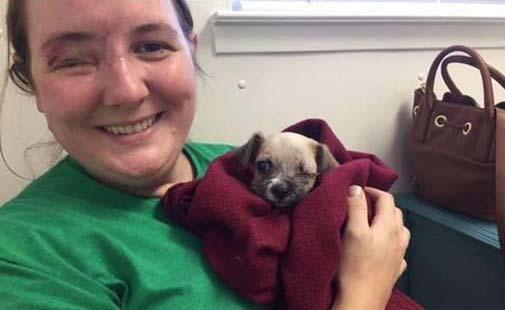 Chú cún nhỏ hi sinh một mắt cứu chủ nhân