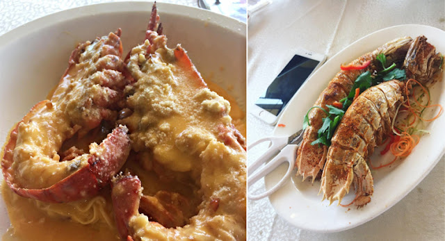 Top 8 Well-Loved Food Places in Hong Kong by Locals & Celebrities