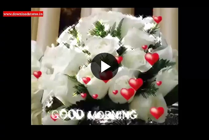 Good Morning Status Video Download