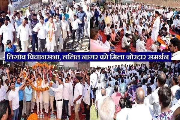congress-tigaon-candidate-lalit-nagar-get-massive-support-news