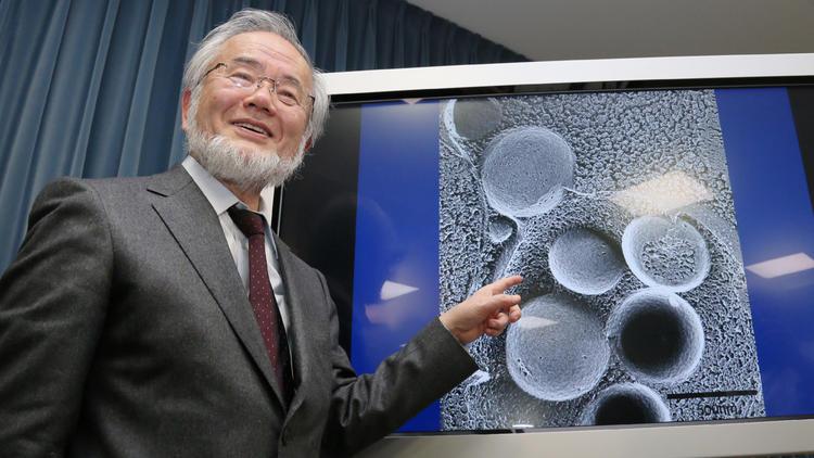 Peraih Nobel Kedokteran Ini Ungkap Manfaat Menakjubkan Puasa