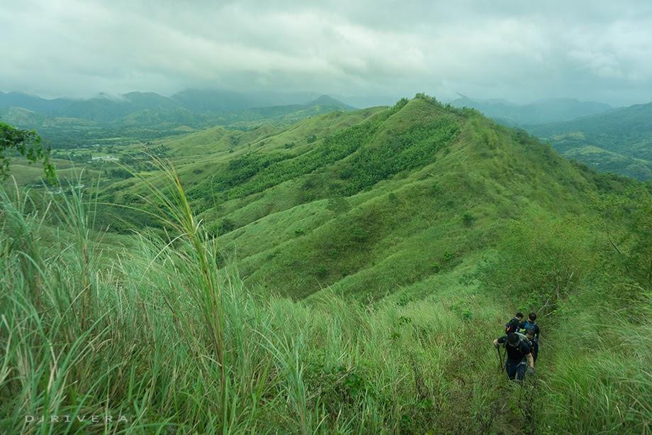 Rolling hills of Mt. Maynoba
