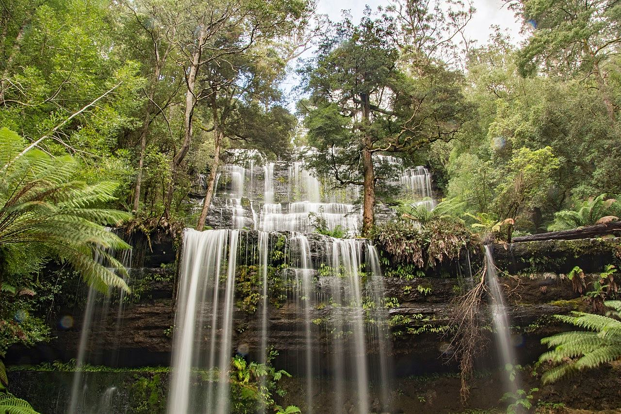 塔斯馬尼亞-景點-推薦-費爾德國家公園-羅素瀑布-自由行-旅遊-澳洲-Tasmania-Tourist-Attraction-Russell-Falls-Mount-Field-National-Park-Travel-destination