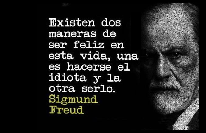 Frases De Freud Psicologia: 26 Frases De Sigmund Freud Que Te Van A Hacer Pensar