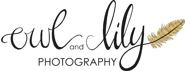 photography logo, branding, logo design, hand lettering, owl & lily photography