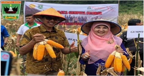 Gubernur Sumatera Barat:Jadikan Lahan Kosong Yang Tidak Terpakai Jadi Lahan Pertanian, Yang Menhasikan Nilai  Ekonomi