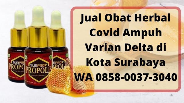 Jual Obat Herbal Covid Ampuh Varian Delta di Kota Surabaya WA 0858-0037-3040
