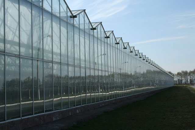 Greenhouses made of tempered glass