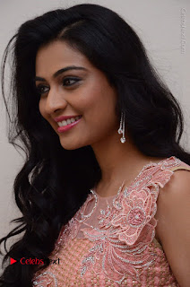 Actress Neha Hinge Stills in Pink Long Dress at Srivalli Teaser Launch  0020.JPG