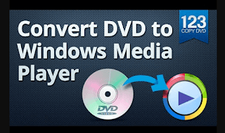 DVD-Cloner Gold 2019 16.40 Build 1447