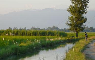 Rivers in Nepal