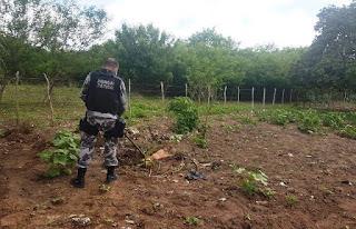 CUITÉ DE MAMANGUAPE! Homem mata jovem por dívida de R$ 5 reais e enterra corpo no quintal