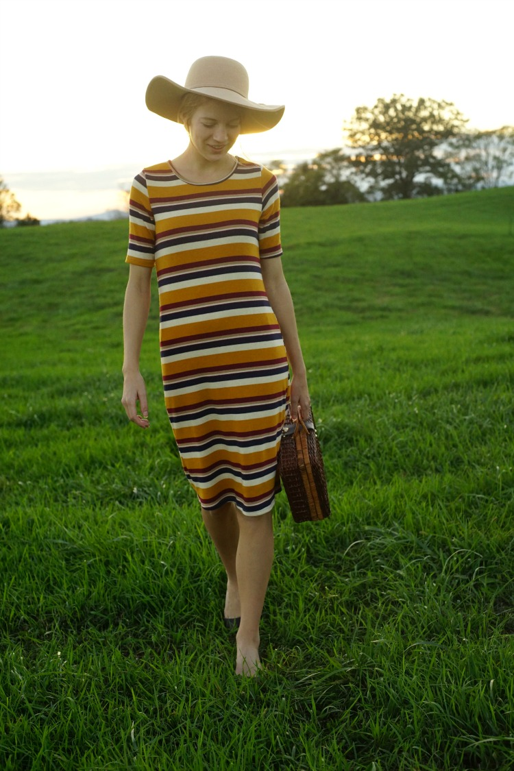ShopStevie Striped Dress Style Virginia Picnic