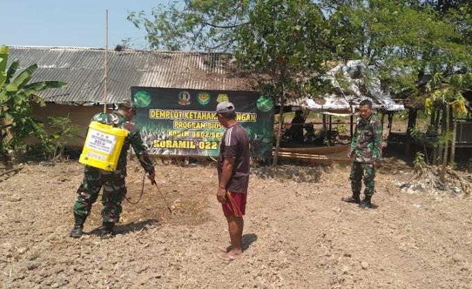 Dukung Program Ketahanan Pangan, Koramil 0221/Kopo Semprotkan Bios-44 di Lahan Jagung Milik Petani