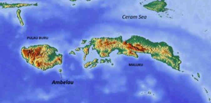 Pemerintah Kabupaten Buru Selatan, Maluku diminta keseriusannya dalam memperhatikan nasib para korban gempa tektonik Ambaluw karena penyaluran bantuan diduga tidak tepat sasaran dan nilainya tidak sesuai tingkat kerusakan bangunan.
