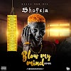 MUSIC: Shofela - Blow My Mind [Mash Up]