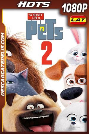 Mascotas 2 ( 2019) 1080p HDTS Latino